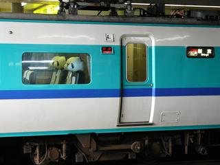 P1020379s.jpg