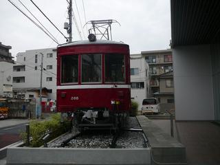 P1030831s.jpg