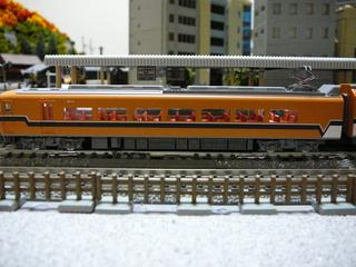 P1040399s.jpg